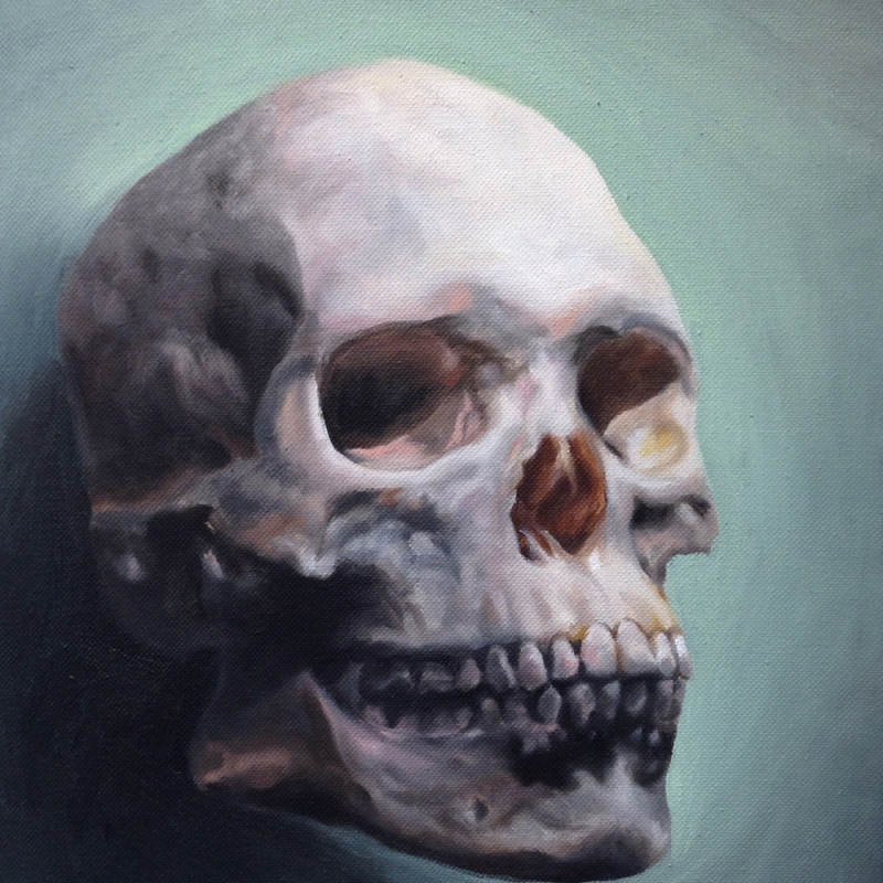 oil painting of a skull